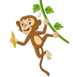 cartoon monkey hanging and holds banana vector image
