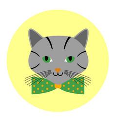 Cats avatar with bow tie cartoon circle vector