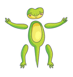 cute gecko for animation vector image