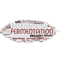 Fermenting word cloud concept vector