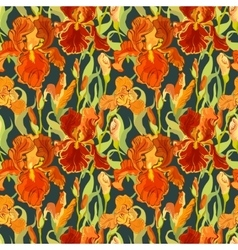 Floral seamless pattern Red iris flower vector image