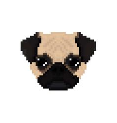 Mops dog head in pixel art style vector