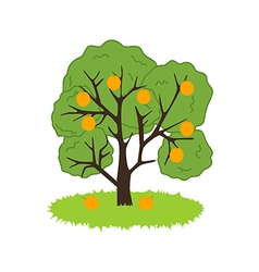Orange tree icon vector