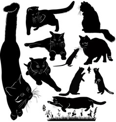 Set of cats power isolated on white background vector