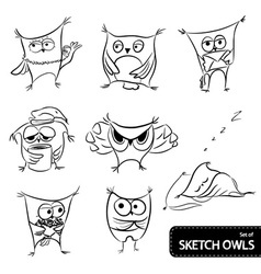 Set of owl sketch vector
