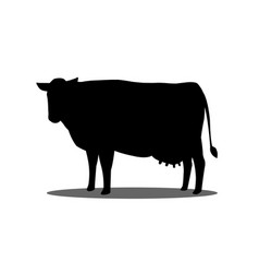 silhouette a cow on a white background vector image