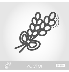 Spikelets wheat outline icon Harvest Thanksgiving vector