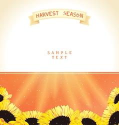 Harvest season with sunflowers vector