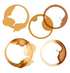 stains of coffee vector image vector image