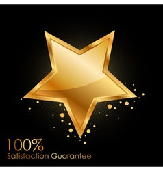 100 satisfaction guarantee vector image vector image