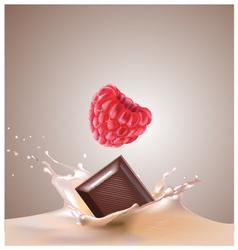 raspberry chocolate milk vector image