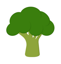 card with broccoli vector image