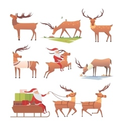 Christmas deer set vector image