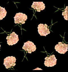 floral seamless pattern with carnation flowers vector image