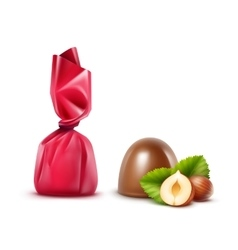 set chocolate candies with hazelnuts in foil vector image