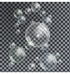 Water Bubbles set vector image