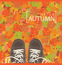 autumn banner with the words and brown shoes vector image