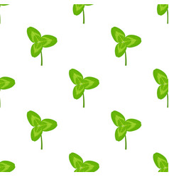 clover leaves pattern isolated on white background vector image