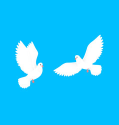 couple dove white free birds in sky paper vector image