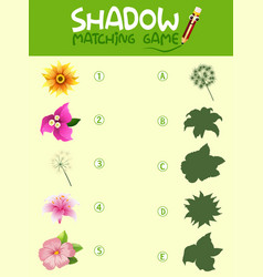 Flower shadow matching game template vector