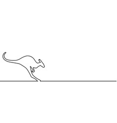 kangaroo line vector image
