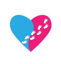Pink and blue heart with footprints on a white vector