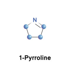 pyrrolines are dihydropyrroles vector image