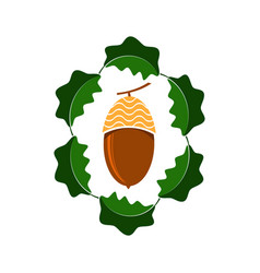 ripe acorn icon autumn oak nut and leaves logo vector image