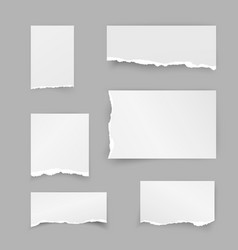 set of torn paper pieces scrap paper object strip vector image