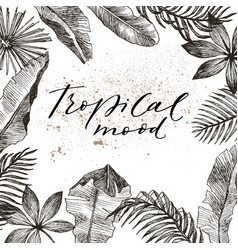 tropical plants exotic vector image