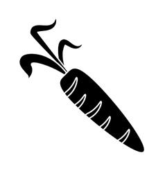 Pictogram fresh carrot vegetable healthy icon vector