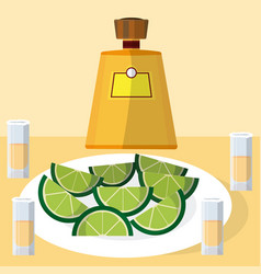 tequila bottle with shots vector image