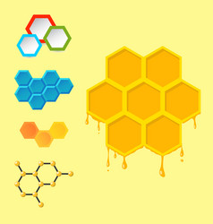 linear hexagon design elements different vector image vector image