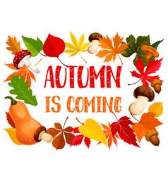 autumn frame of fall leaf pumpkin and mushroom vector image