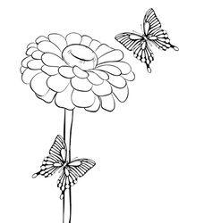 Beautiful black-and-white flower with butterflies vector