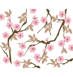 Blooming cherry background vector