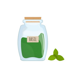 dried basil leaves stored in glass jar isolated on vector image