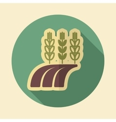 Ears Wheat Barley Rye on Field retro flat icon vector