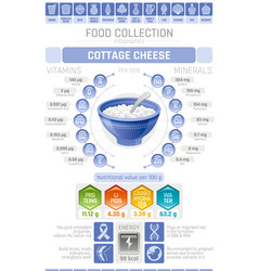 Food infographics poster cottage cheese dairy vector