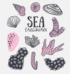 Grunge backgroung with sea treasures - corals vector image