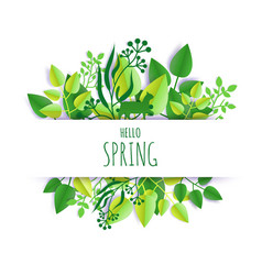hello spring card hand lettering typography vector image