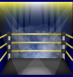 Professional empty boxing ring vector