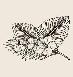 tropical floral vintage monochrome composition vector image