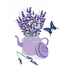Watercolor of lavender flowers vector