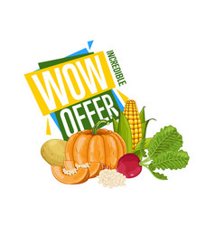 wow offer discount poster with fresh vegetable vector image