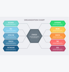 Business infographic organization chart with 10 vector