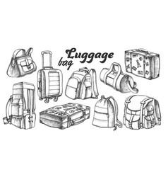 Collection different luggage ink set vector