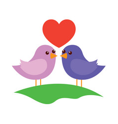 cute couple birds togehther with heart in the vector image