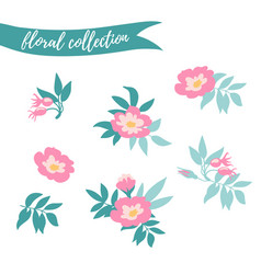Floral set colorful collection with leaves and vector