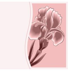 Iris Postcard vector image